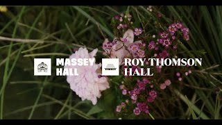 Massey Hall & Roy Thomson Hall present Spring 2016 | Soundboard issue 3