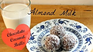 Almond Milk And Chocolate Coconut Balls
