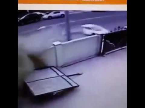 Lamborghini Split In Half Youtube