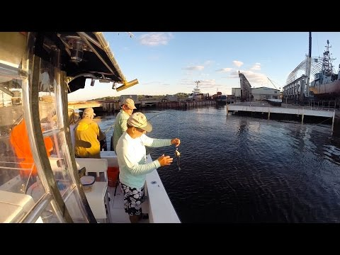 Inshore Fishing  For Flounder, Croakers, And Redfish