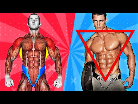 Get The PERFECT Male Body (ONLY 5 Exercises You Need!)