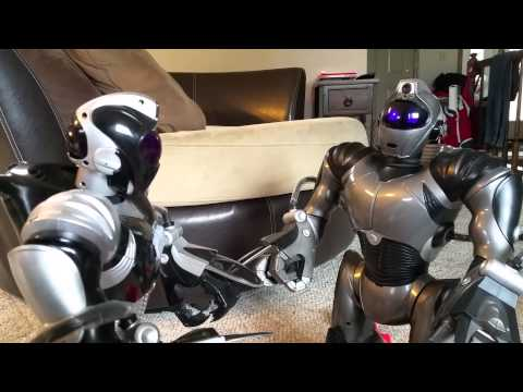 Robosapien v2s playing and fighting