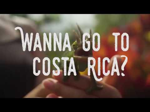 Go For Adventure || Explore Costa Rica with UW!