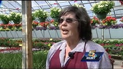 West Chester nursery closing after more than 30 years in business