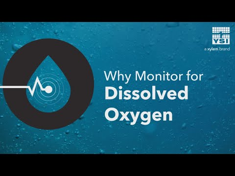 Why Monitor For Dissolved Oxygen