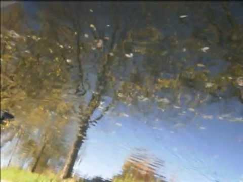Upside Down Stream