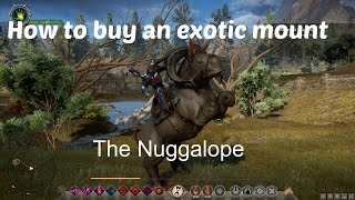 [HQ] How to buy an exotic mount Dragon Age: Inquisition