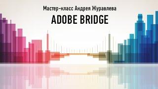 Онлайн мастер-класс Adobe Bridge. Андрей Журавлев