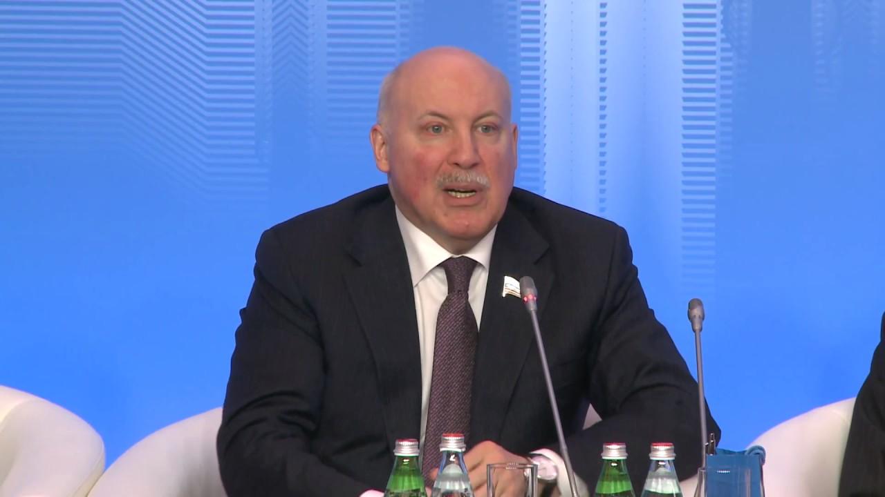 """全体会议 """"俄中全面合作伙伴关系体系中的人文联系作用"""""""