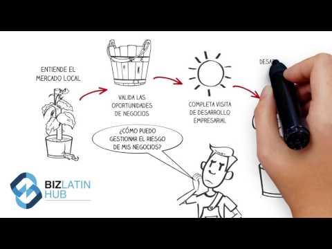 Servicios de Entrada al Mercado - América Latina - Biz Latin Hub