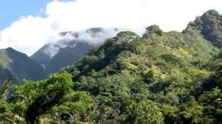 2014-07-20 Tour around  Tahiti