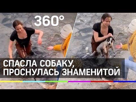 Многодетная мать спасла тонущую собаку и проснулась знаменитой