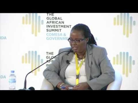 AGRIBUSINESS PANEL AT THE GLOBAL AFRICAN INVESTMENT SUMMIT - MODERATED BY MAGGIE MUTESI