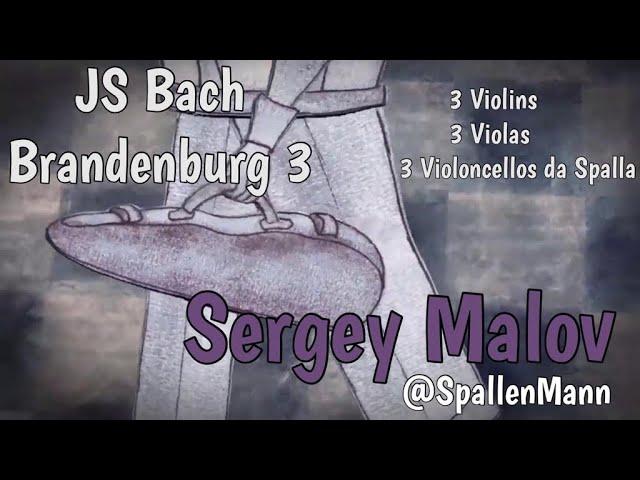 Bach Brandenburg Concerto 3 played by Sergey Malov (@Spallenmann)