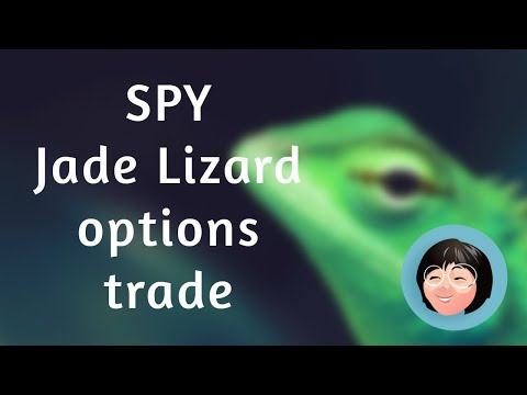 Trading daily spy options