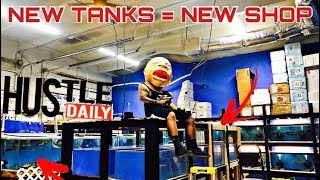 new-tanks-new-shop-full-stock-list-everything-on-sale