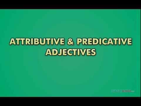 attributive and predicative adjectives exercises pdf