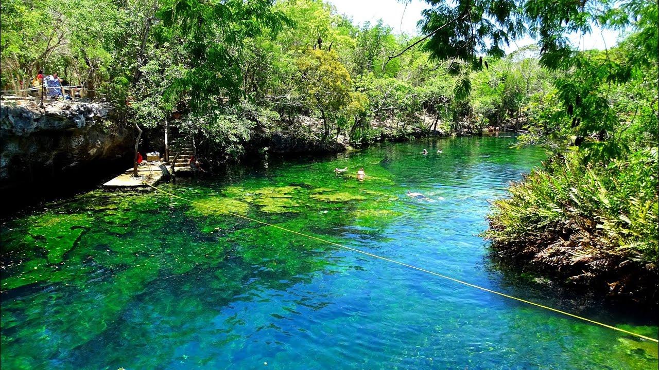Cenote jardin del eden cenotes snorkeling riviera maya for Cancion en el jardin del eden