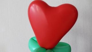 Сердце из шаров (пластика) / Heart of balls (plastic)