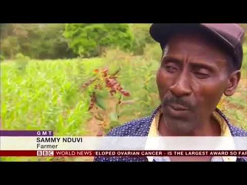 BBC World News: Africa's Population Explosion