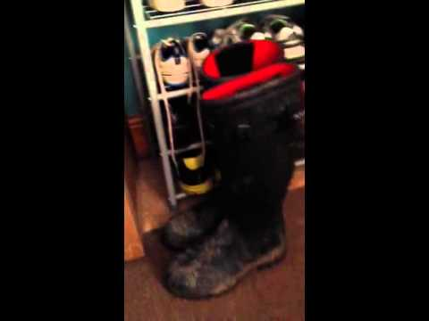 Aigle Wellington Boots ROCK!