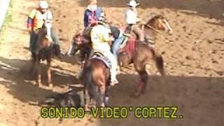 Toros Coleados Jose Freitez - El Napoleón. Apure 2008