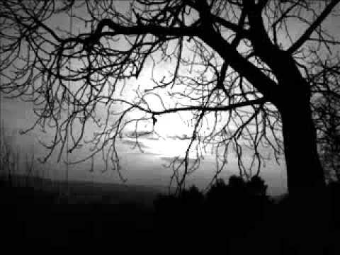 Peter Raeburn - Celebrare (Layo & Bushwacka Remix)