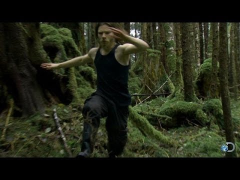 Bear breaks into cabin - Railroad Alaska: Series 2 from YouTube · Duration:  2 minutes 42 seconds