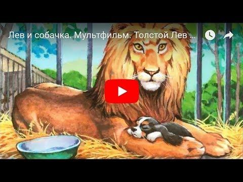 Л.Н. Толстой. Лев и собачка. Мультфильм в картинках