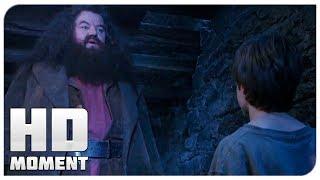 Хагрид пришел за Гарри - Гарри Поттер и философский камень (2002) - Момент из фильма