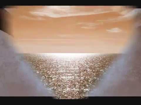 Silent Angel ~ Paul Van Dyk vs. Delirium