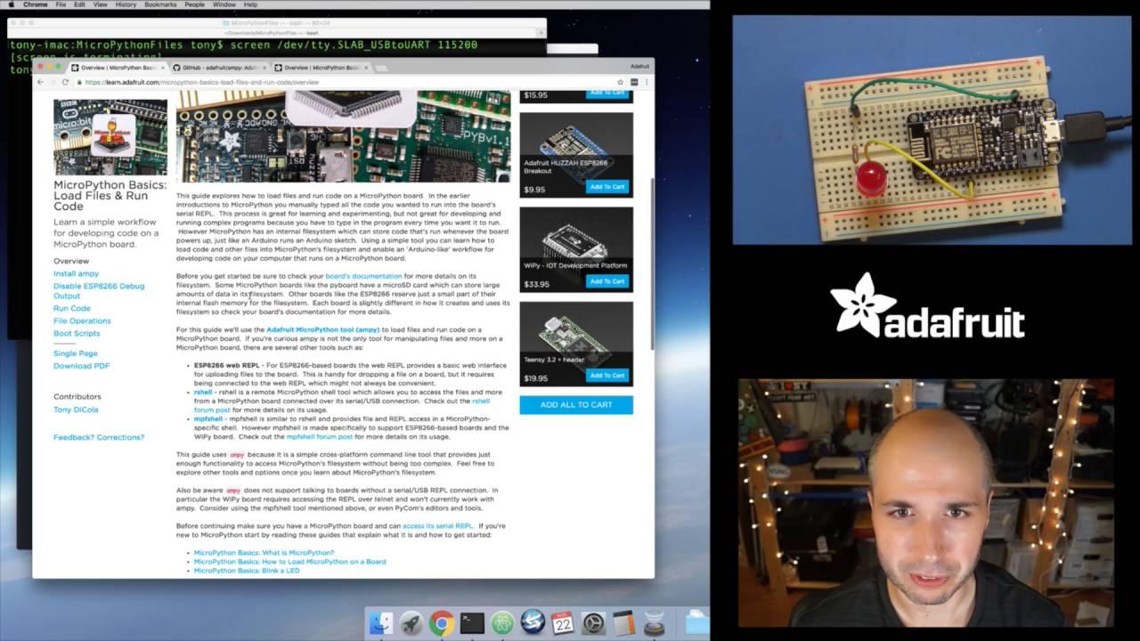 MicroPython Basics: Load Files & Run Code