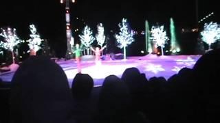 Winter Womderland on Ice