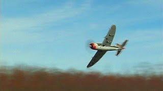 Crash, Then Fly, The FMS P-47 980mm Razorback
