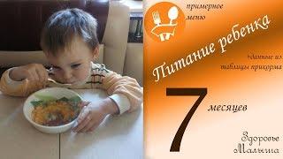 Питание ребенка в 7 месяцев: примерное меню и данные из таблицы прикорма