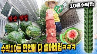 수박칼로 수박10개 동시에 잘라보았다! 대박 ㅋㅋㅋ(Watermelon Slicer Cutter cut 10 watermelons)