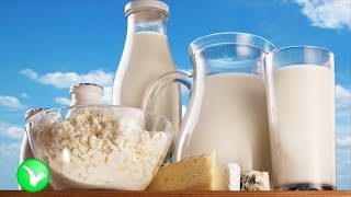 Молочные продукты! Чего больше, пользы или вреда?