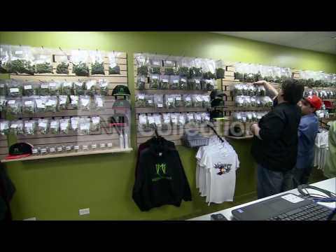 REPORT:POT-RELATED TRAFFIC DEATHS IN CO UP 92%