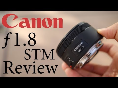 Canon 50mm 1.8 STM In Depth Review