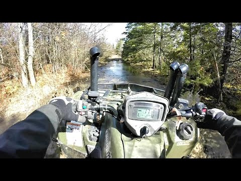 Found A Squatter In The Swamp (Can am 800 Outlander, Suzuki KingQuad)
