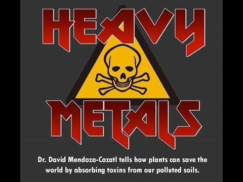 Science Café (Oct. 13): Heavy Metals