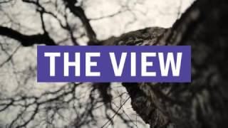 The View & Cabbage ANNOUNCED ~ TRNSMT 2017