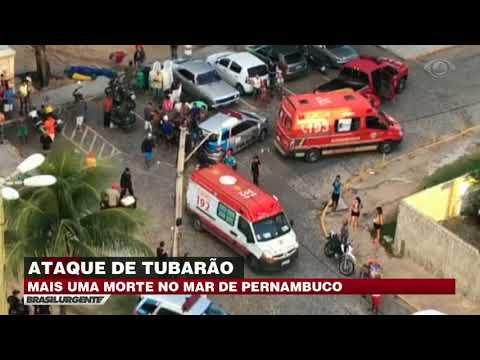 Estudante Morre Após Ataque De Tubarão Em Recife