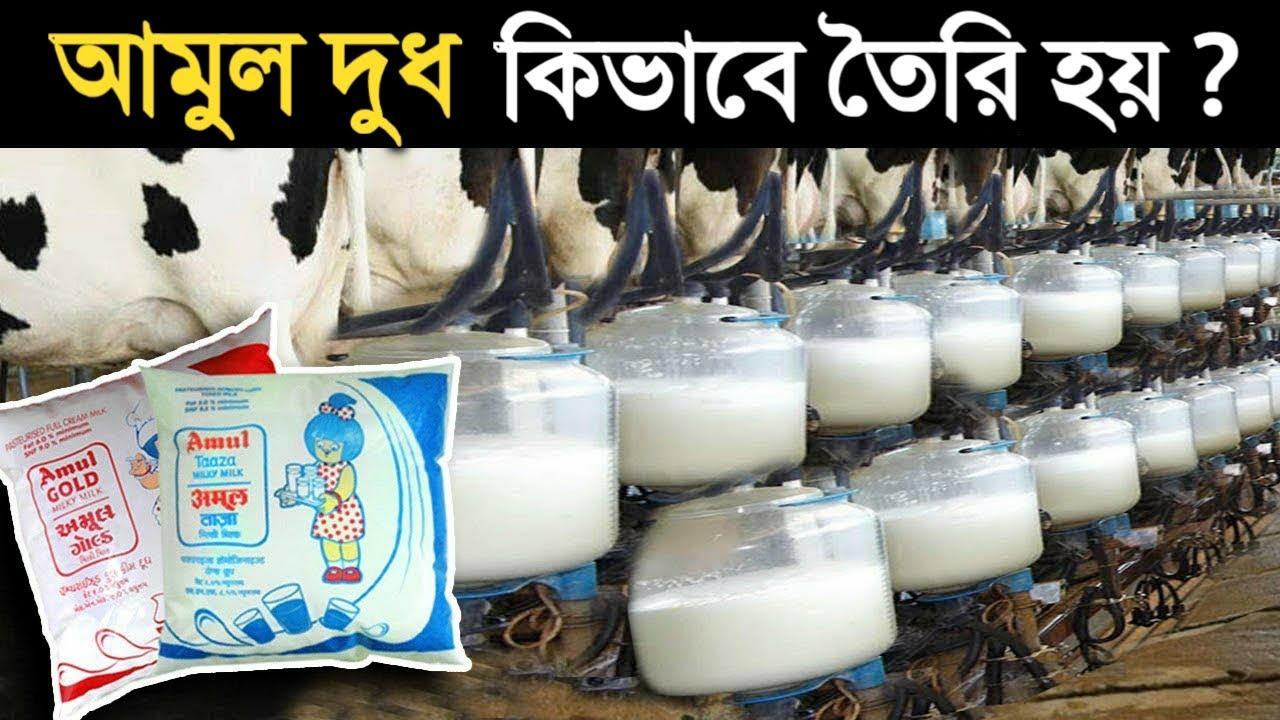 কারখানায় কীভাবে আমুল দুধ তৈরি হয় ?  The Story of Banas Dairy - Amul Milk Factory in Bangla