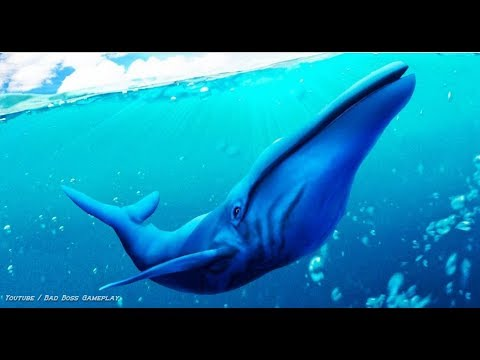 Blue Whale Simulator 3D Android Gameplay HD