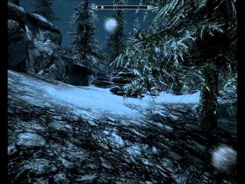Skyrim - Finding helgi