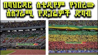 Amazing Ethiopian FANS in Bahirdar @ Ethiopia Vs Kenya African Cup Qualification Match 2018