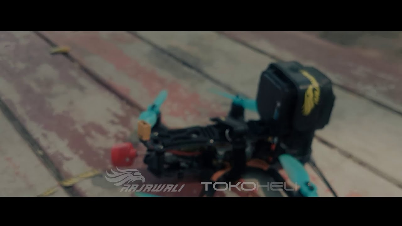 CINEMAWHOOP 3 inch + Gopro session5 + 2s Lipo 360mah картинки
