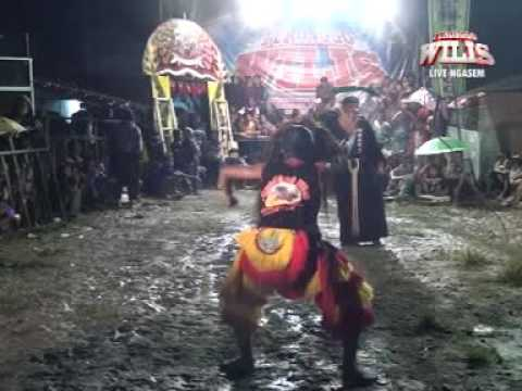 Turonggo Wilis Live NGASEM - GONDANG: ganongan - bantengan keren atraksi sangar serem senenganku