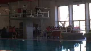 UNM Swim and Dive; Mountain West Conference Intro